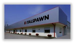 (Русский) ITALSPAWN – спонсор конференции. 24 страны и 10 миллионов литров мицелия в год